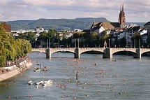 Swimming in the Rhine Picture